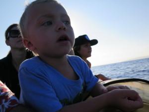 Maui Whale Trip 059